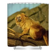 El Paso Zoo - Golden Lion Tamarin Shower Curtain