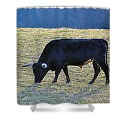 El Toro Shower Curtain by Jan Amiss Photography