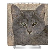 Elby Shower Curtain
