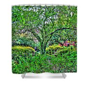 Elderly Man At St. Luke's Garden Shower Curtain