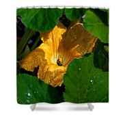 Eldorado For Bees Shower Curtain