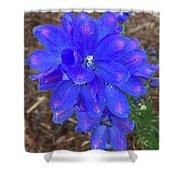 Electric Blue Flower Shower Curtain