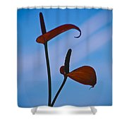 Elegance-1 Shower Curtain