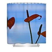 Elegance-2 Shower Curtain