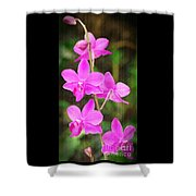 Elegance In Nature Shower Curtain