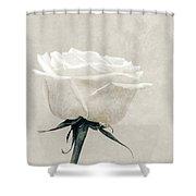 Elegance In White Shower Curtain by Wim Lanclus