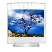 Elegance Of Time  Shower Curtain