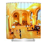 Elegant Entrance Shower Curtain