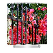 Elegant Fence Shower Curtain