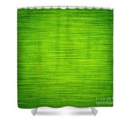Elegant Green Abstract Background Shower Curtain