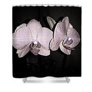 Elegant Orchid Shower Curtain