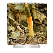 Elegant Stinkhorn Mushroom Shower Curtain