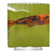 Elegant Swim Shower Curtain