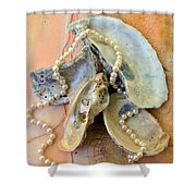 Elegant Treasures From The Sea Shower Curtain