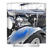 Elegant Vintage Shower Curtain