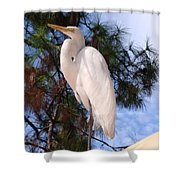 Elegant White Crane Shower Curtain