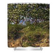 Elements At Play 2015 Shower Curtain