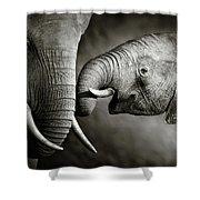 Elephant Affection Shower Curtain