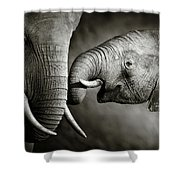 Elephant Affection Shower Curtain