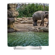Elephant And Waterfall Shower Curtain