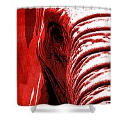 Elephant Animal Decorative Red Wall Poster 14 - By  Diana Van Shower Curtain