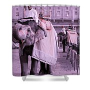 Elephant At Amber Fort Shower Curtain