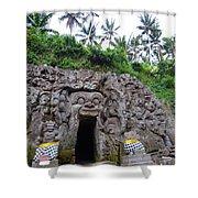 Elephant Cave Temple Shower Curtain