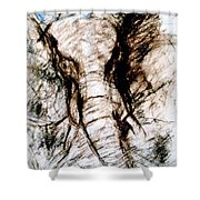 Elephant Charge Shower Curtain