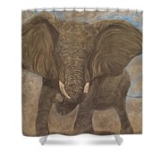Elephant Charging Shower Curtain