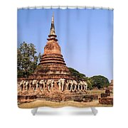 Elephant Chedi Historical Place Shower Curtain