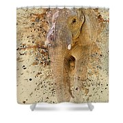 Elephant Color Splash Shower Curtain