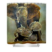 Elephant Familly Shower Curtain