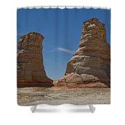 Elephant Feet Arizona Shower Curtain