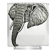 Elephant Head Shower Curtain