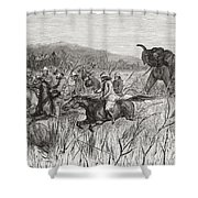 Elephant Hunters In The 19th Century Shower Curtain