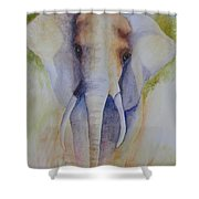 Elephant In The Grass Shower Curtain