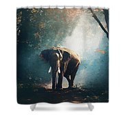 Elephant In The Mist - Painting Shower Curtain