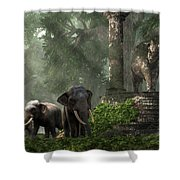 Elephant Kingdom Shower Curtain