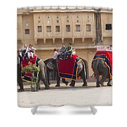 Elephant Ride 2 Shower Curtain
