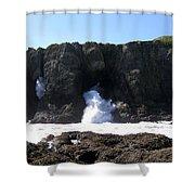 Elephant Rock Shower Curtain