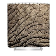 Elephant Skin Background Shower Curtain
