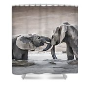 Elephants From Africa Shower Curtain