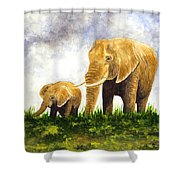 Elephants - Mother And Baby Shower Curtain