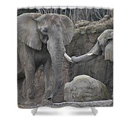 Elephants Playing 3 Shower Curtain