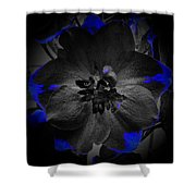 Elfin Princess With Dash Of Blue Shower Curtain