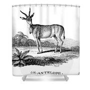 Elk Antelope Shower Curtain