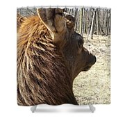 Elk Profile Shower Curtain