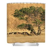 Elk Under Tree Shower Curtain