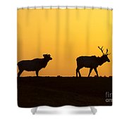 Elks In Silhouette Shower Curtain