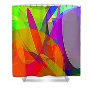 Ellipses 6 Shower Curtain